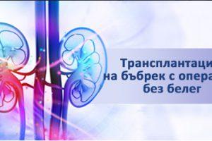 Трансплантация на бъбрек с операция без белег